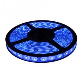 Taśma LED 300 SMD 2835 IP20 niebieska