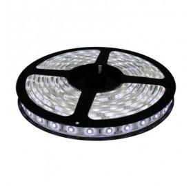 Taśma 150 LED 3528 5m IP65 12W BZ