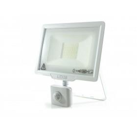 Naświetlacz LED 30W z czujnikiem ruchu zimny biały