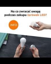 Na co zwrócić uwagę podczas zakupu żarówek LED?